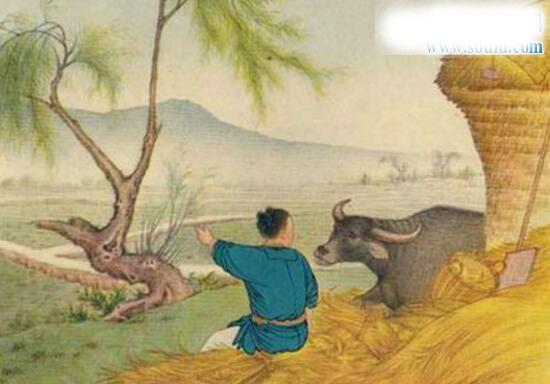七夕节的传说,牛郎的织女的爱情故事